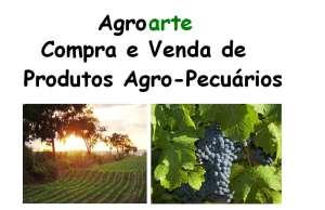 Agroarte - Compra e Venda de Produtos Agro-Pecuários