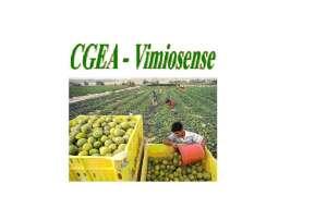 Centro de Gestão de Empresas Agrícolas Vimiosense